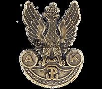 przypinka-armii-krajowej-wz-2-orzel-ak.j