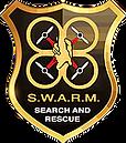swarm_PNG.webp