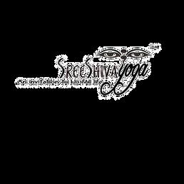 transparant logo .png