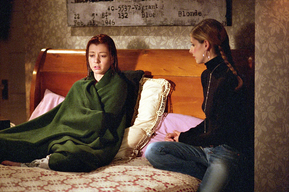 Willow and Buffy Season Six