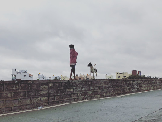 Two friends take a stroll