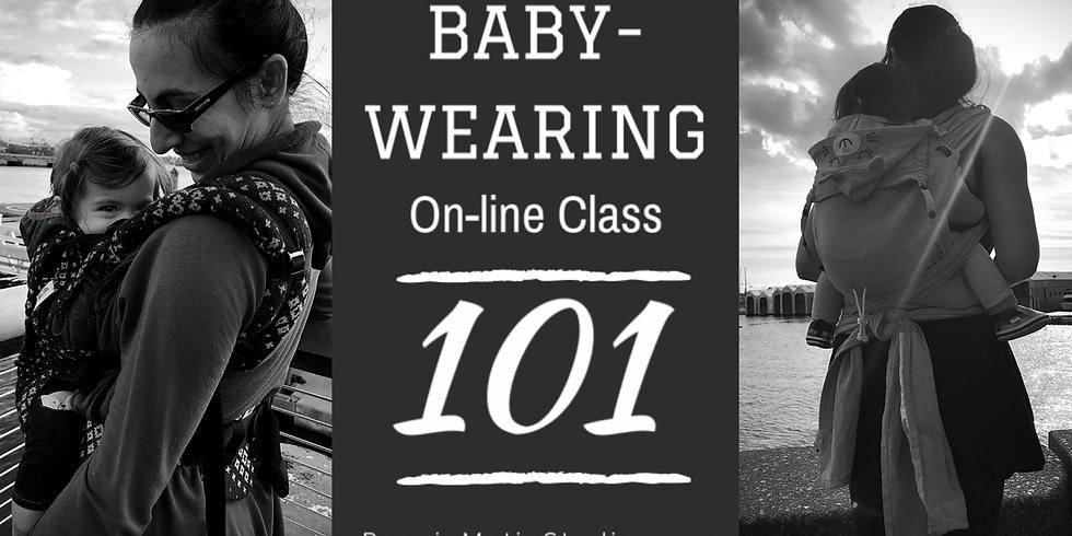 Babywearing 101 Webinar