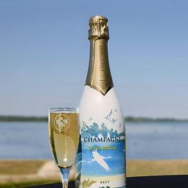 BullesDer-champagne-coll OT Lac du Der.J