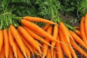 Carrots (Mokum F1)