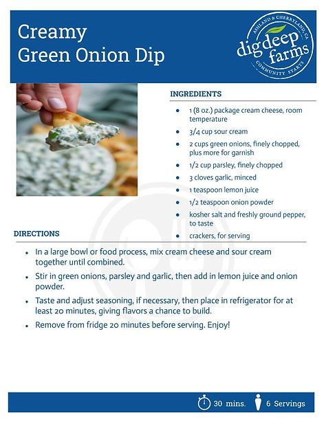 Green Onion Dip.jpg