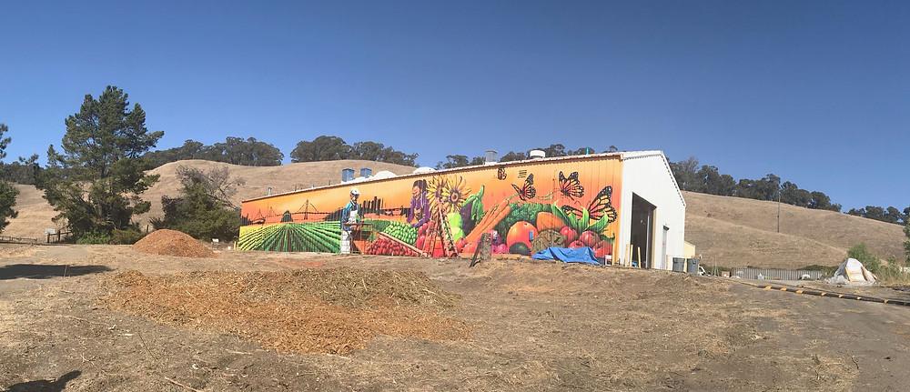 Dig Deep Farms Food Hub building is completed