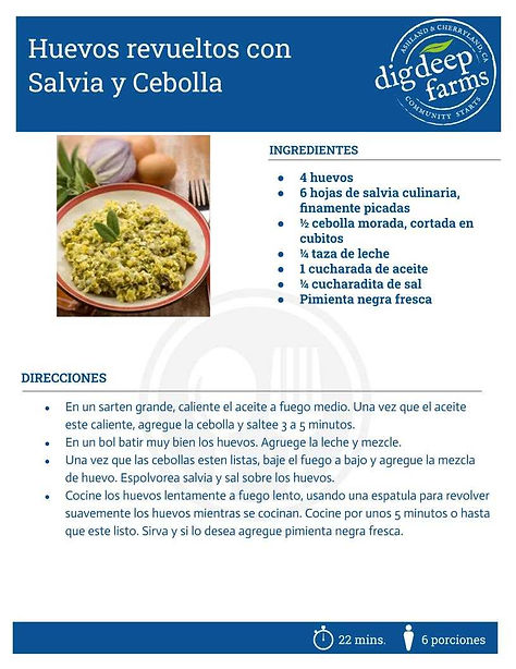 Huevos revueltos con Salvia y Cebolla.jp