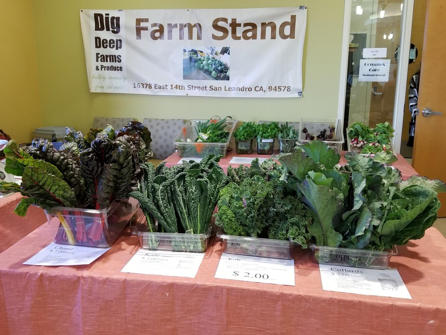 hwc farm stand.jpg