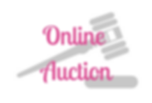Online Auction Marin Charitable Spring F