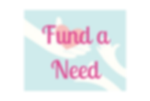 Fund-a-Need Marin Charitable Spring Flin