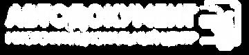 автодокумент лого новое.png