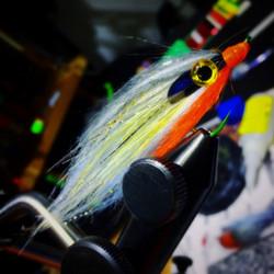 ISCAS DE FLY FISHING
