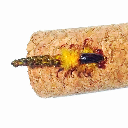 Isca de Fly Fishing Ninfa stonefly