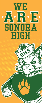 Copy of 2019-SHS-ARE-BannerCat.png