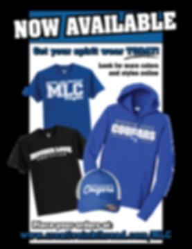MLCS-Flyer-web.png