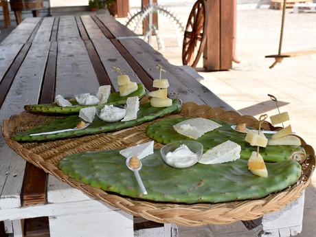 Pala di fico d'India con formaggi