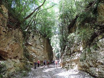 Avanguardie-gargano-trekking.jpg