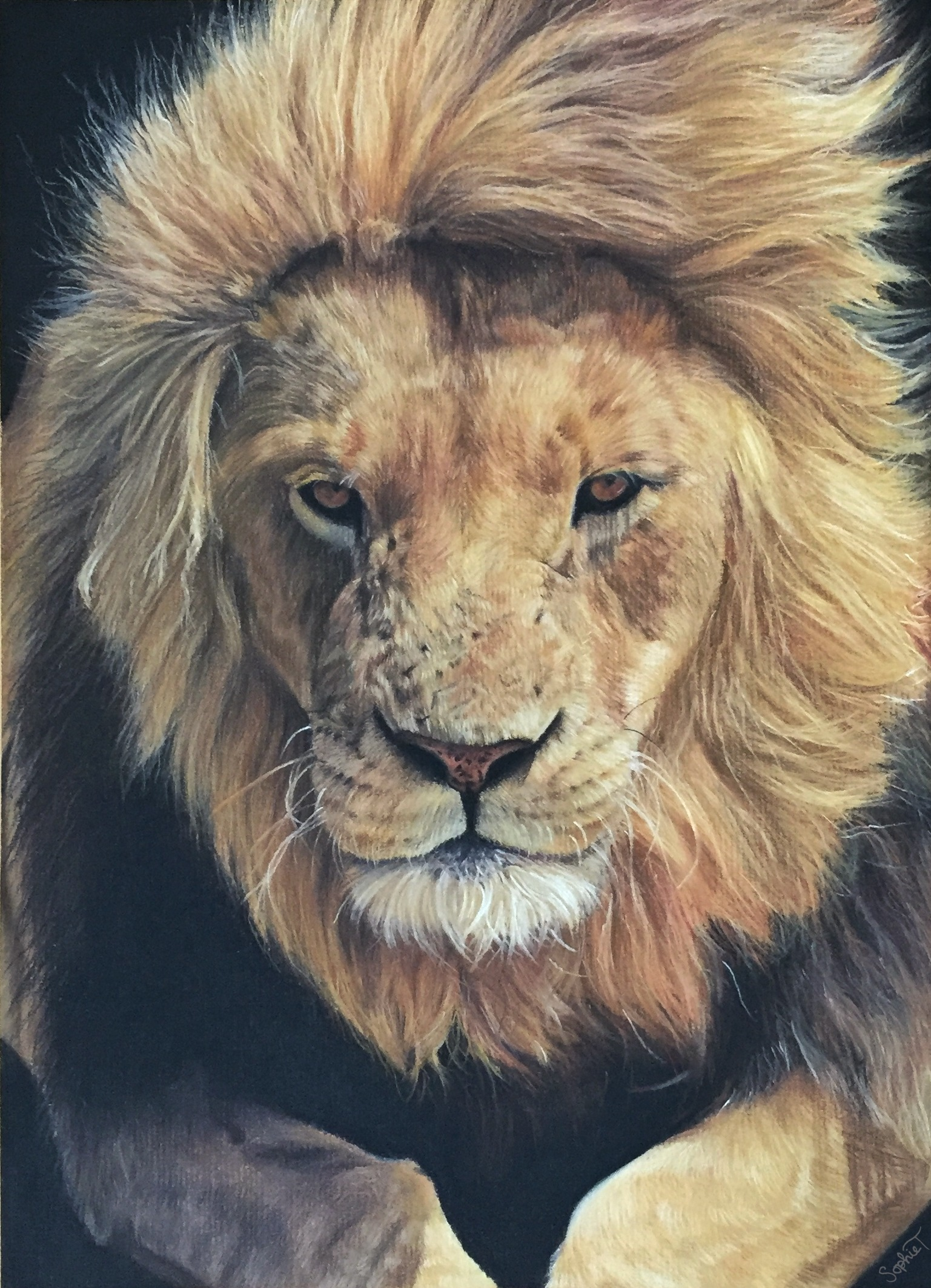 Aslan (from the Chronicles of Narnia)