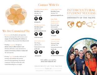 Intercultural Student Success