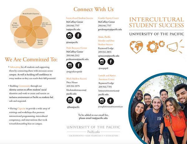 Intercultural Student Success