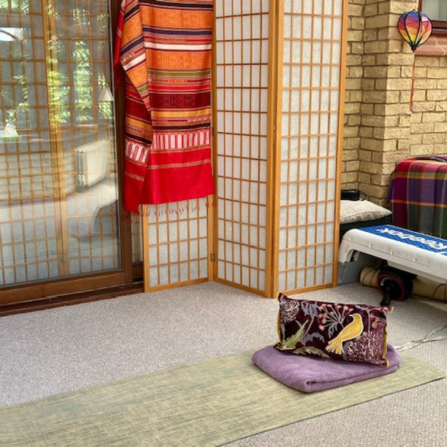 1-2-1 Back Care Yoga Therapy 6 week Course