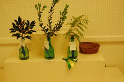 Vase Entries