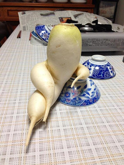 So Chic vegetable...