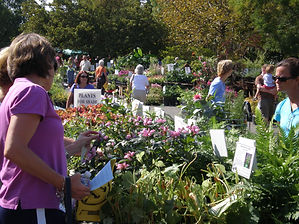 Plant-Sale-Shoppers.jpg