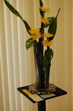 Yellow ribbon winner