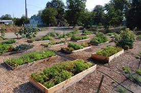 CGC Supporting Efforts for a New Community Garden