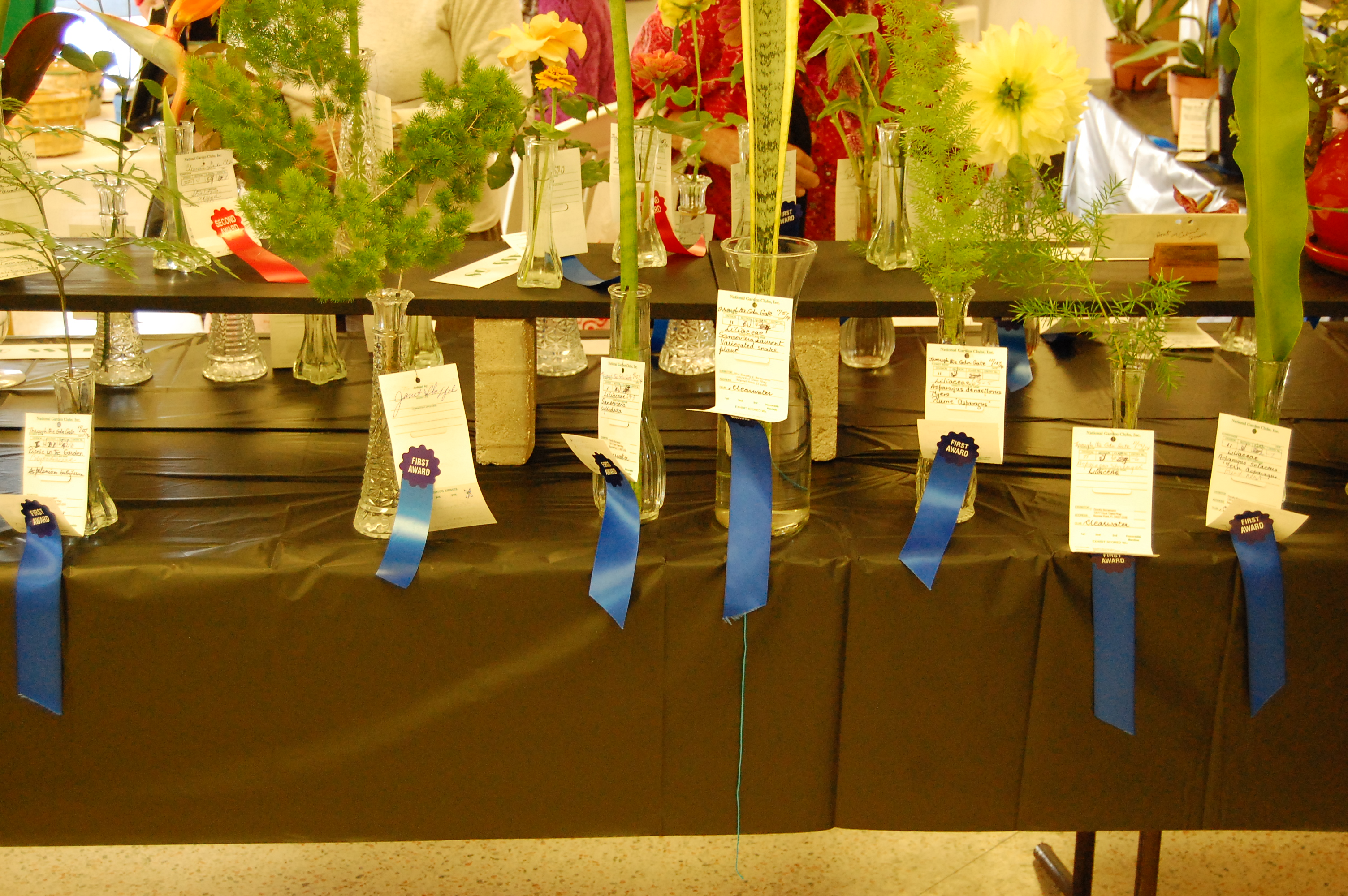 Blue ribbon entries