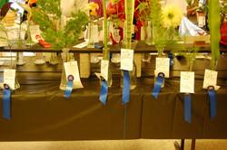 Blue ribbon entries
