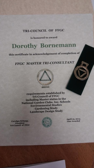 Master Tri-Consultant Awarded to Clearwater Garden Club Member Dorothy Bornemann