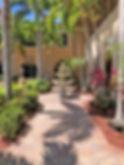 Gladiolus outside.jpg