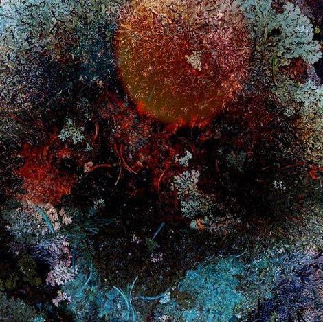 Lichen Worlds