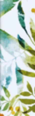 FLÄDERTONIC2_edited_edited.jpg
