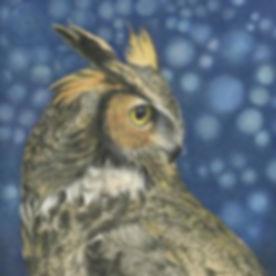 owl-penny-cash.jpg