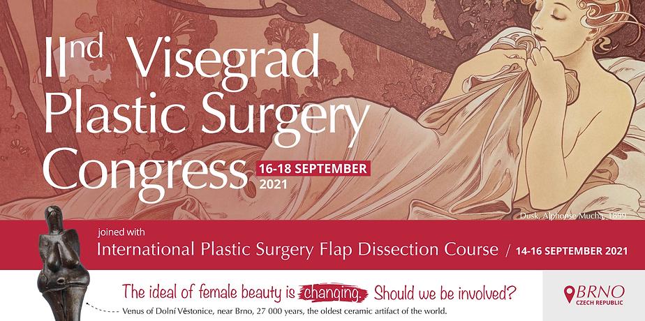 V4 plastic surgery hlavní obrázek.png