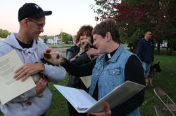 Blessing of the animals yorkies