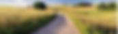 Farm Roadbackground.png