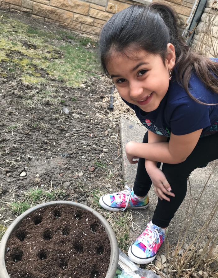 Elliana planting