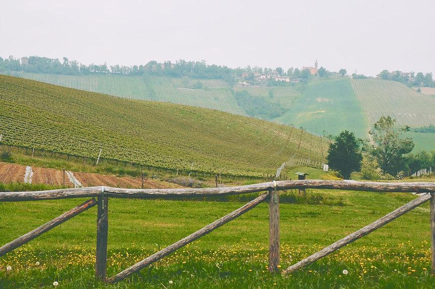 Consultoria em Turismo Rura. Fazenda e plantações em uma propriedade rural podem se transformar em fontes de receita para novos negócios.