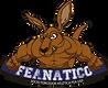 Logo Feanatico colorido.png