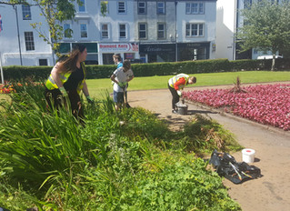 Whitehaven Town Council prepares for Cumbria in Bloom