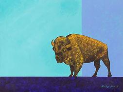 Bison, buffalo, tatanka