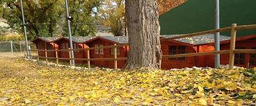 campamento_otoño.jpg