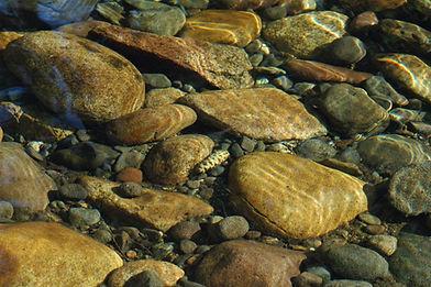 Rivière des Alpes