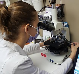 Observing Oral Microbiome under Microscrope