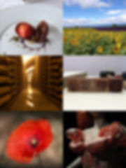 restaurant gastronomique, cave d'affinage du Comté, Savon de Marseille, haute couture, paysage de Provence