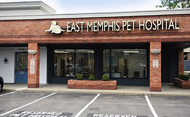 East Memphis Pet Hospital